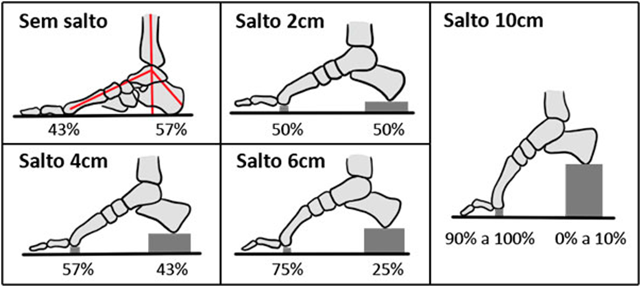 A distribuição de carga de acordo com a altura do calçado