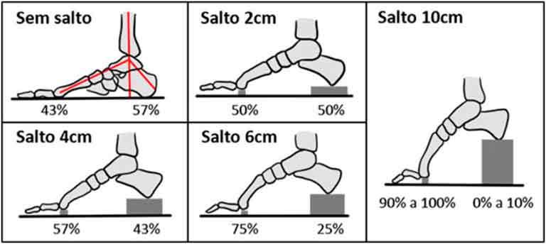 Imagem ilustrativa representando a relação do tamanho do salto com a pressão sob os metatarsos.